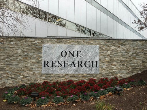 Exterior Sign & Wall