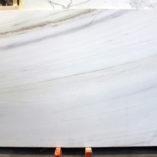 biancolasapolb030807a2cm