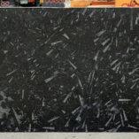 blackfossilpolj081114a2cm