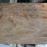 brecciaoniciatapolj122012b3cm