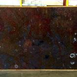 etruscanfossilpolj072309a2cm