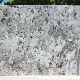 alaskanwhitepolj091615b3cm